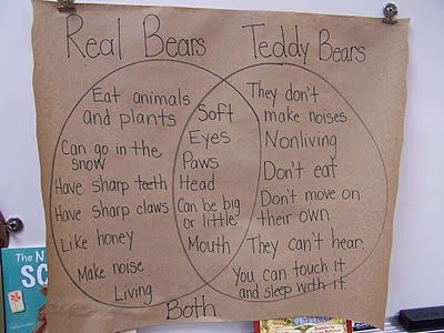 venn diagram - real bears/teddy bears (combine non fiction about real bears with a teddy bear & pajama day)ec