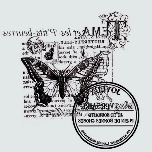 papillon sur fond écriture