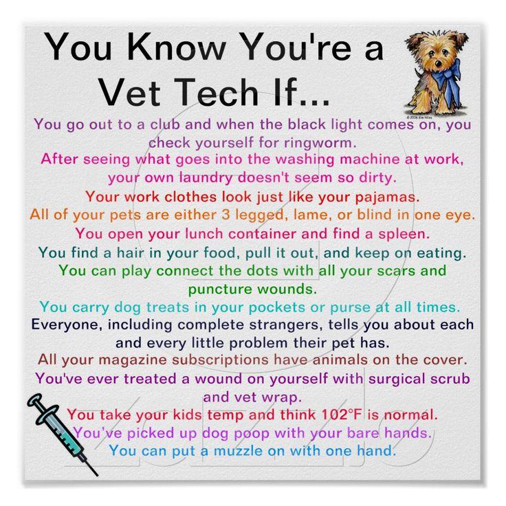 Vet Tech Quotes Stunning Best 25 Vet Tech Quotes Ideas On Pinterest  Vet Med Vet Tech