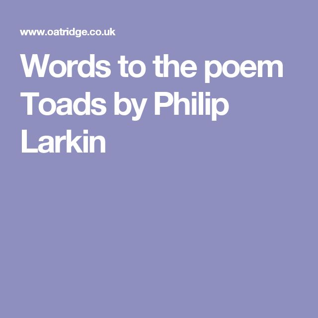 Words to the poem Toads by Philip Larkin