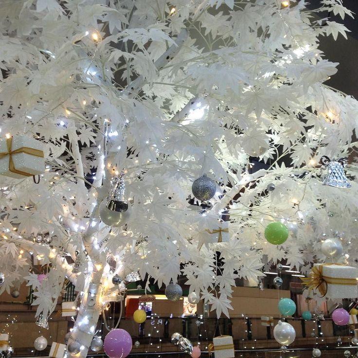 タイバンコクの街もクリスマスムードが出てきていますが暖かい所のクリスマスは初めてなので何か変な感じです...バンコクで見える雪で一層綺麗になった木 #風景 ##街並み #クリスマス #準備 #タイ #thailand #バンコク #bankoku #観光 #旅行 #自分磨き #成長 #cocoacana #ここあかな