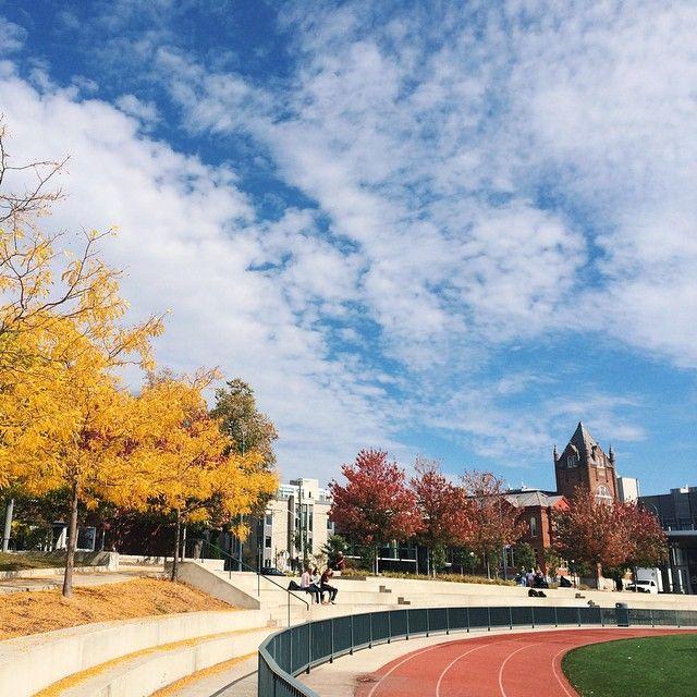 Beautiful shot of campus