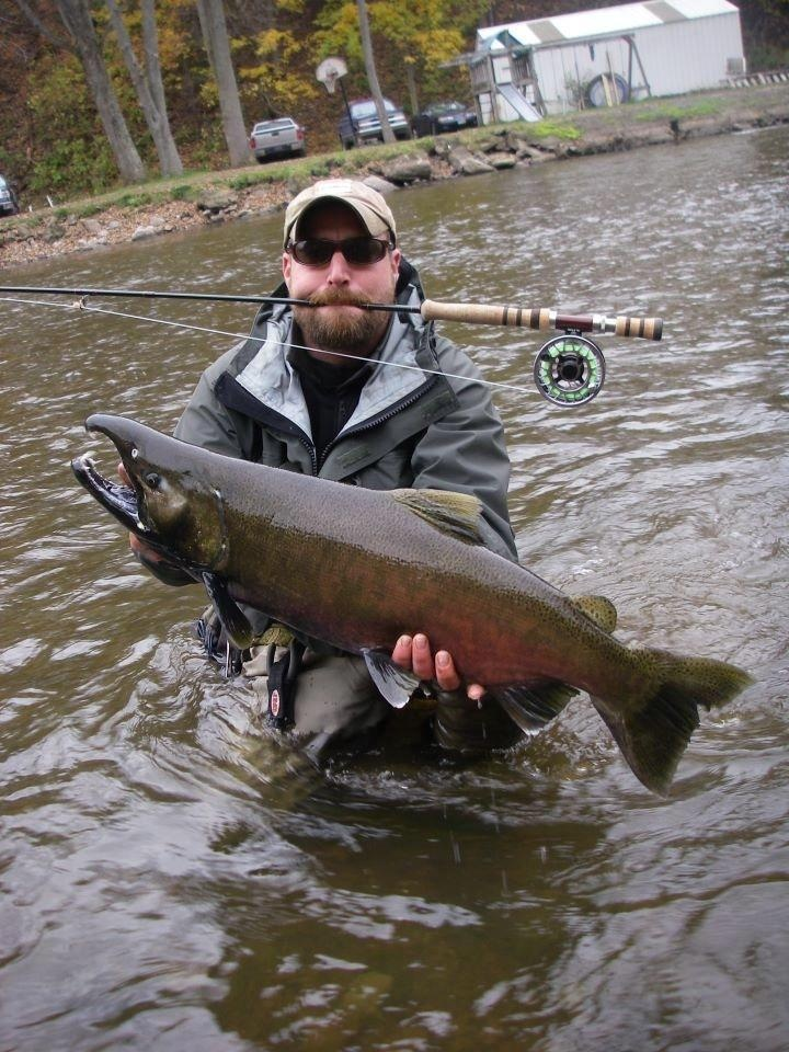 68 best king salmon images on pinterest king salmon for Best salmon fishing lures