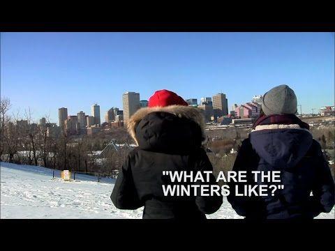 Video: what are the winters like in Edmonton, Alberta, Canada?  #winteryeg