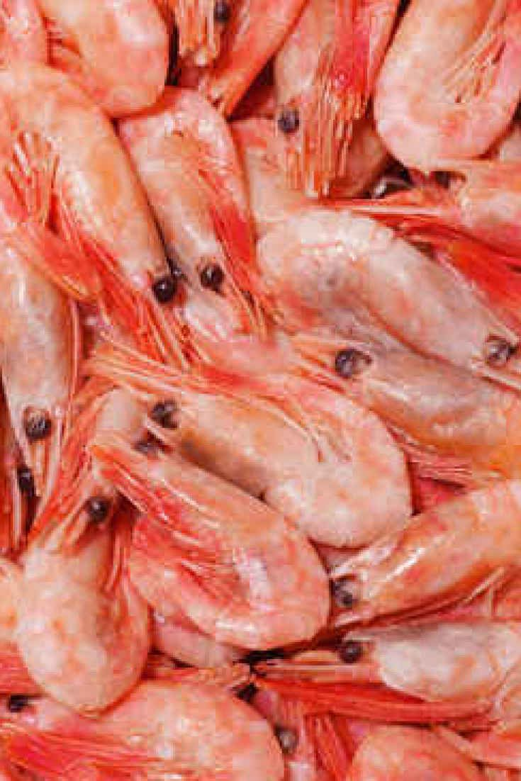 See seafood eat seafood by lizelda87 343 food and drink for Fish types to eat
