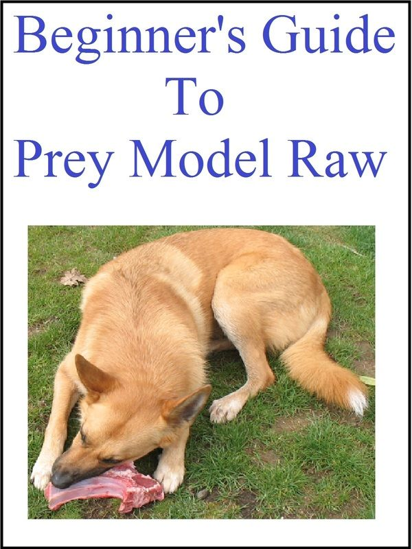 Best thing you can possibly read when beginning a raw diet for your pet