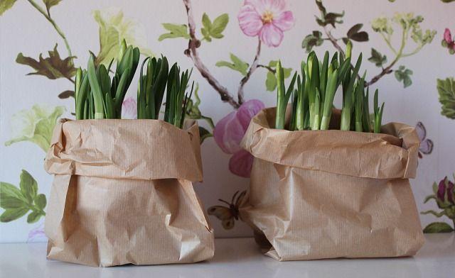 DIY: bloembollen in papieren zak