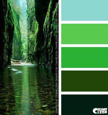 Harmonie vert Nouvelle-Zélande I Design I Couleur I Inspiration I Camaïeu I Peinture I