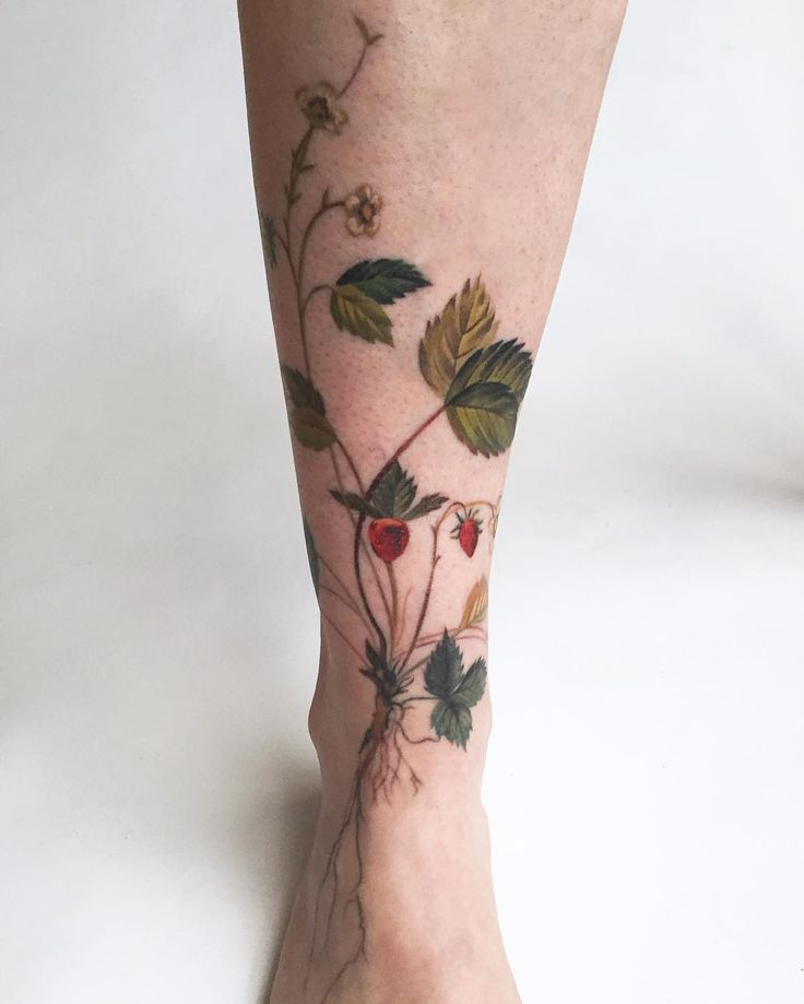 Botanical tattoo by the amazing Amanda Wachob