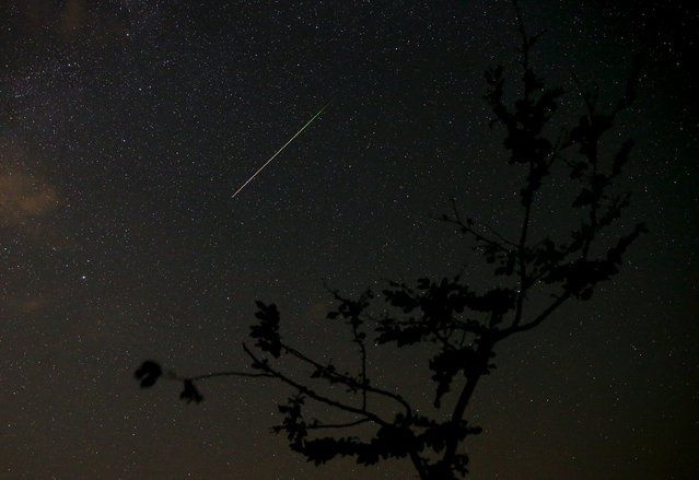 A meteor streaks across the sky during the Perseid meteor shower near Kraljevine on mountain Smetovi in the early morning August 12, 2015. (Photo by Dado Ruvic/Reuters)
