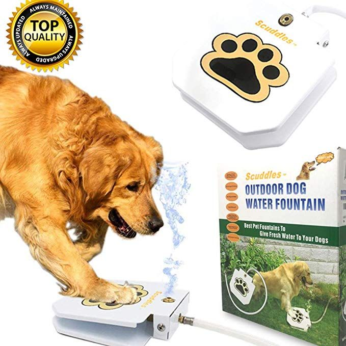 Scuddles Dog Drinking Water Fountain Step On A Outdoor Auto Pet