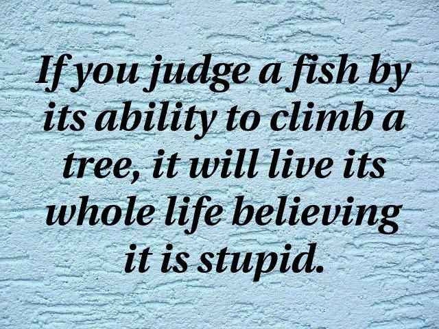 If You Judge A Fish By Its Ability To Climb A Tree It Will Live