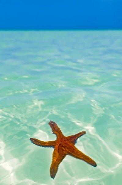 #Holbox #Mexico our favorite Island! Nuestra isla favorita!