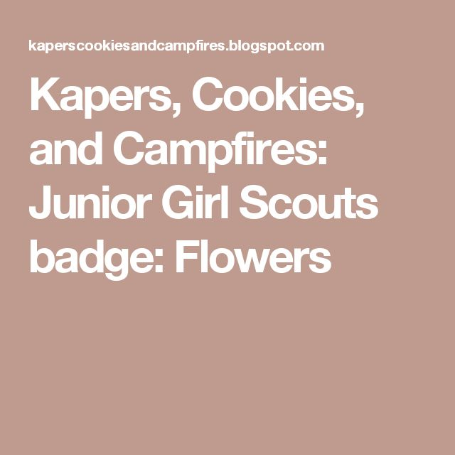 Kapers, Cookies, and Campfires: Junior Girl Scouts badge:  Flowers