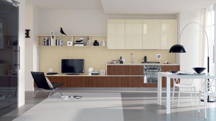 Mood kuchyň s obývací stěnou, moderní multifunkční prostor / multifunctional living space (kitchen with living room)