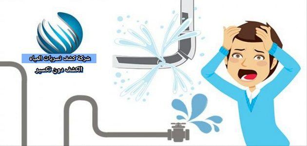 شركة كشف تسربات المياه بالمدينة المنورة 0530364116 كشف التسريب دون تكسير بارخص الاسعار Character Fictional Characters Family Guy
