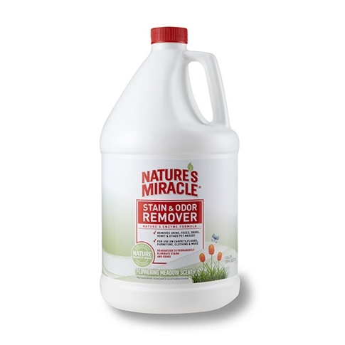 Natural Collar Stain Remover