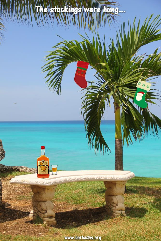 The stockings were hung on the palm trees with care! #Barbados