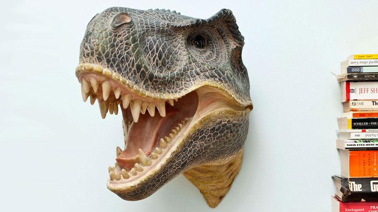 Mounted Dinosaur Head- Best gear and gadgets for men. The place to find cool stuff for guys.