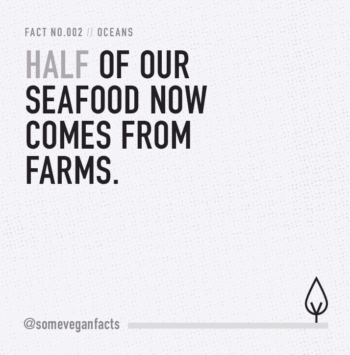 Half of our seafood now comes from farms.