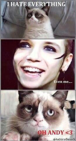 Everybody Loves Andy. I mean, who couldn't!?!?! omg i even love grumpy cat more!! awe i didnt know that he actually liked something and he got happy for andy lol!
