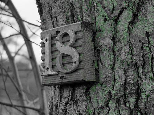 becs.gilbert's photostream