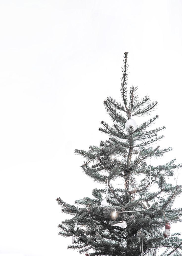 Christmas Tree IPhone Wallpaper