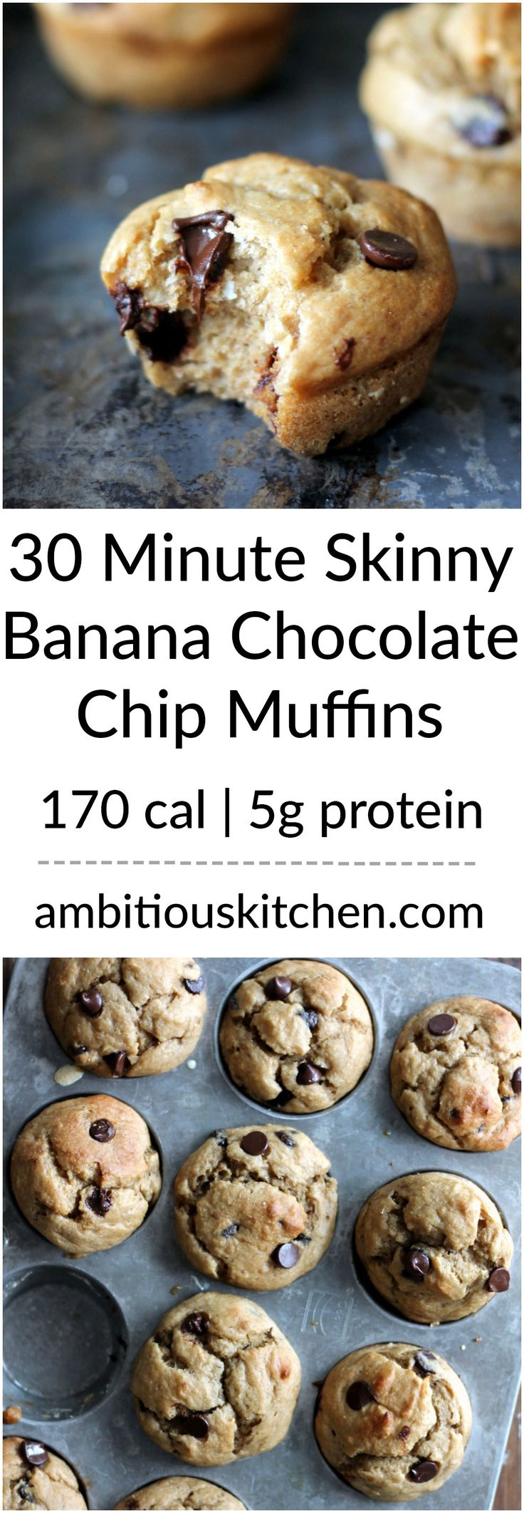 Almost fat free, healthy banana muffins with chocolate chips for a little indulgence. The greek yogurt adds protein and keeps the muffins moist. You'll love these!