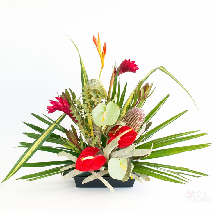 19 best Hawaiian Flowers With Our Aloha images on Pinterest | Flower ...