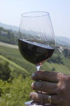 #wine Red wine