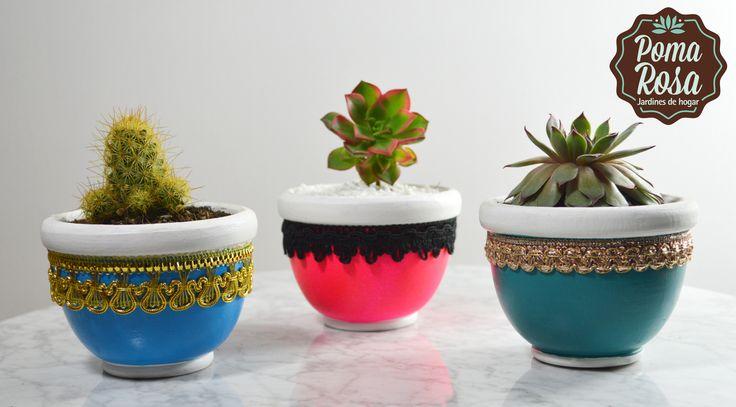 Tener una planta en casa mejora tu salud, tu estado de ánimo y le das un toque natural a tu vida. Decora tus espacios con estas hermosas plantas!  Precio:$25.000 c/u #suculentas #succulents #plantas #diseño #pomarosa #cactus #cactuslover #succulove