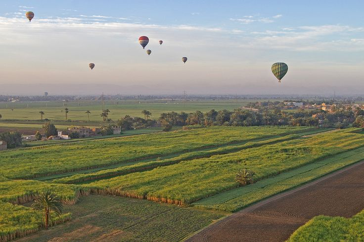https://flic.kr/p/4Xm5GT | Just hot air, wind and light | Taken from a early morning balloon flight along the west bank of the Nile valley with Luxor and a low flying balloon on the horizon also our pick van up can be seen passing between two trees on the left. This is just a small number of the balloons in flight that morning I'm sure someone can tell me the correct terminology for such a gathering, I don't think its call a flock of balloonists :-)