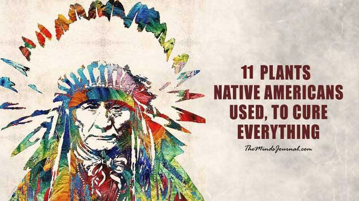 11 Plants Native Americans Used to Cure EVERYTHING  (From joint pain to cancer) - The following 11 plants were used by The Cherokee (Native american Tribe) in the treatment of almost every single illness and health condition (From Joint Pain to Cancer)  - http://themindsjournal.com/11-plants-native-americans-used-cure-everything-joint-pain-cancer/