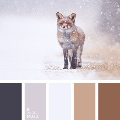 Color combo that was inspired by winter and nature. Color combination, color pallets, color palettes, color scheme, color inspiration. Color of winter. Winters color.