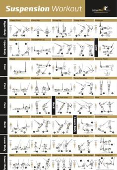 image result for trx beginner routine pdf  trx workouts