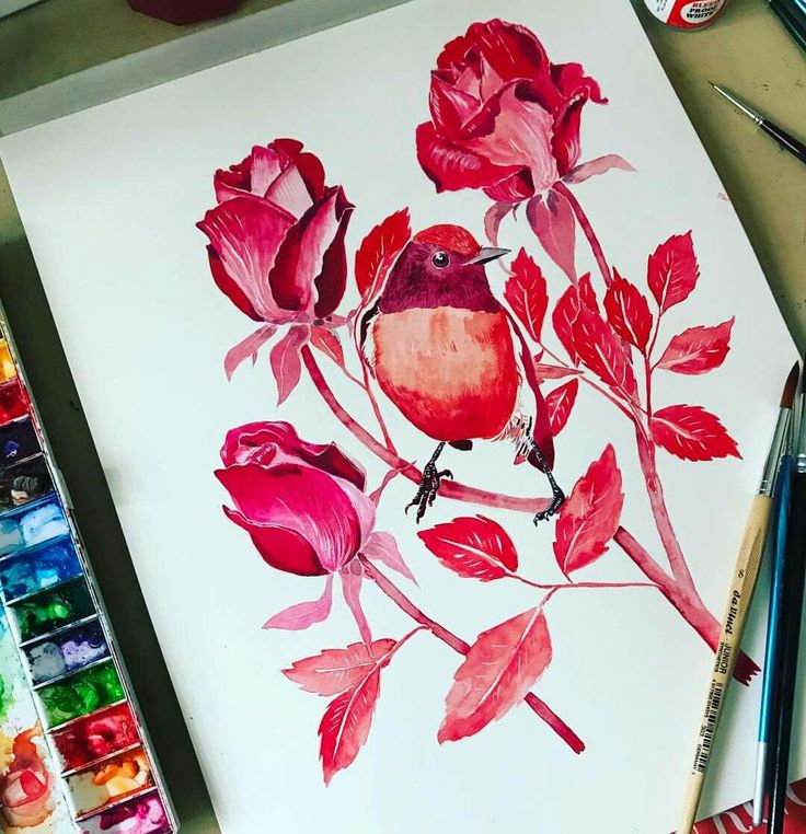 Red robin the roses - Gouache painting by Little Rowan Redhead.