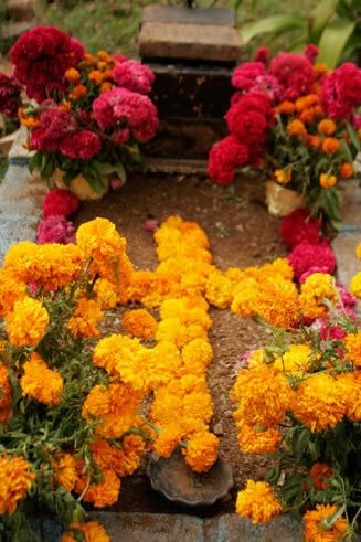 images about día de muertos  day of the dead  on pinterest    dia de los muertos mexican photo essay from the leader in high quality day of the dead resources for more than a decade
