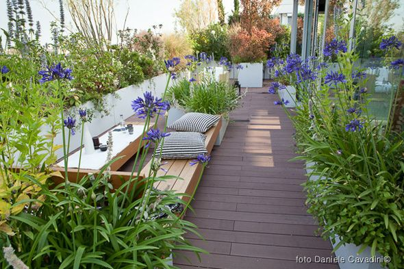 Milan || Roof top terrace by Christina Mazzucchelli