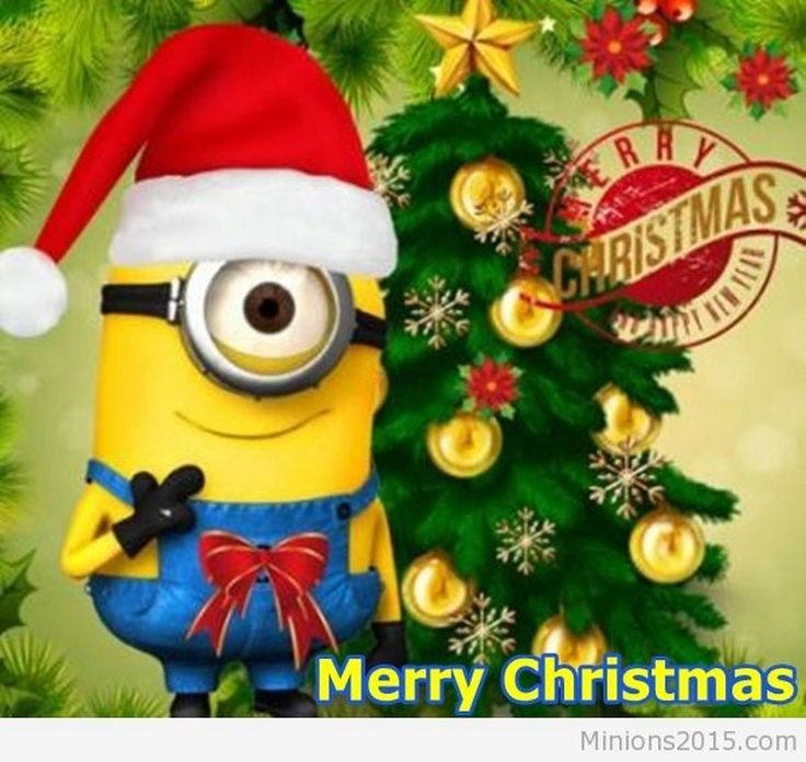 Top Minions Сhristmas pictures (08:14:27 PM, Saturday 03 ...
