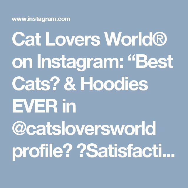 """Cat Lovers World® on Instagram: """"Best Cats👕 & Hoodies EVER in @catsloversworld profile❗ 💯Satisfaction guarantied❗ Worldwide shipping🌍📦 🐈To be…"""" • Instagram"""