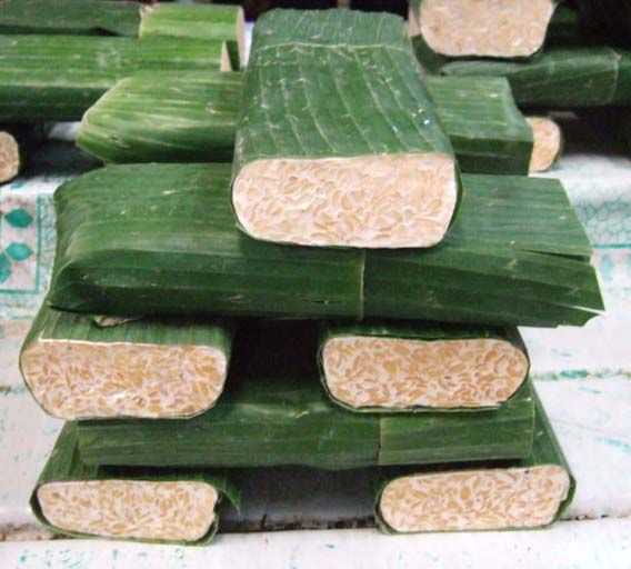 fresh uncooked tempeh..