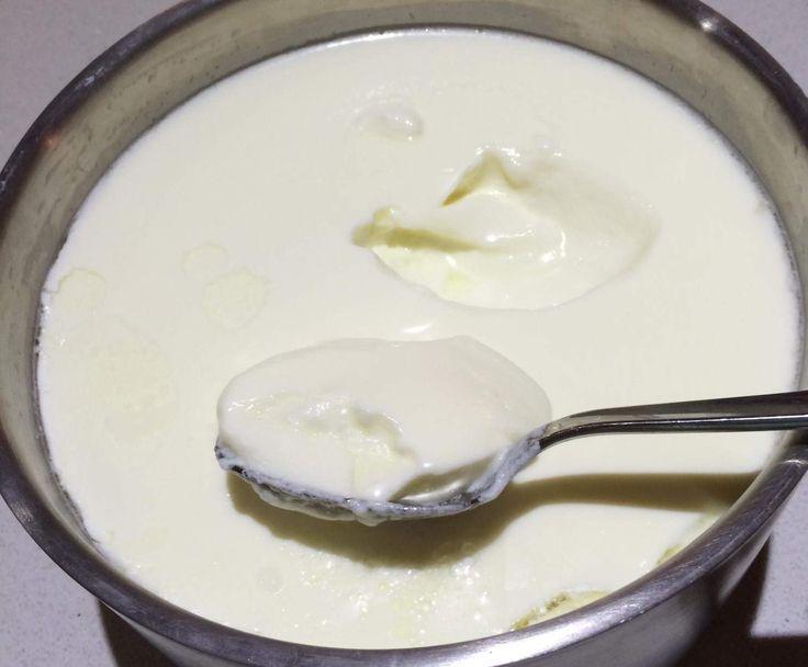 Recipe Double Batch of Yoghurt by Chenoa - Recipe of category Basics