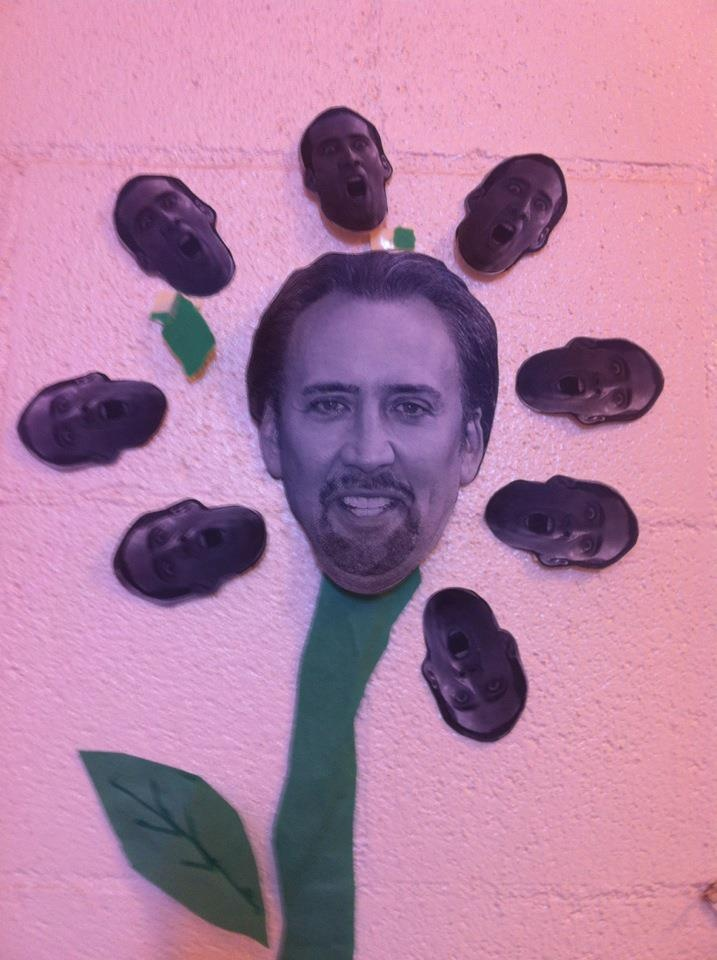 The Best Flowers Don 39 T Need Sunlight Nicolas Cage