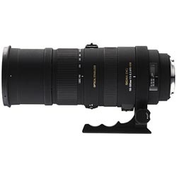 Sigma Lens - 150-500mm (nikon fit) I love this lens i've taken some great pictures of aircraft and wildlife using this