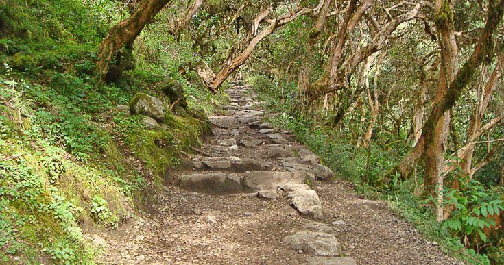 I sentieri di pietre - In genere i cammini inca sono selciati, presentano canali, scale e tunnel. Possono arrivare a diversi metri di larghezza e mostrano grande cura nella lavorazione e disposizione delle pietre.