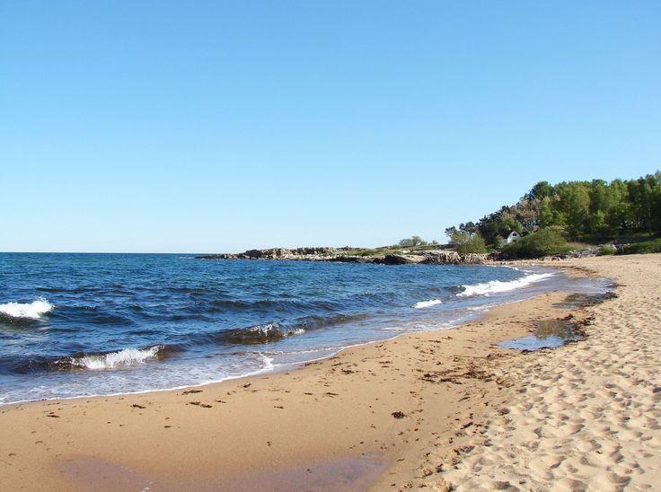 Tobisviken kantas av sandstrand och innanför ligger en vidsträckt sandhed. Området är känt för de speciella naturförhållandena som har skapat förutsät