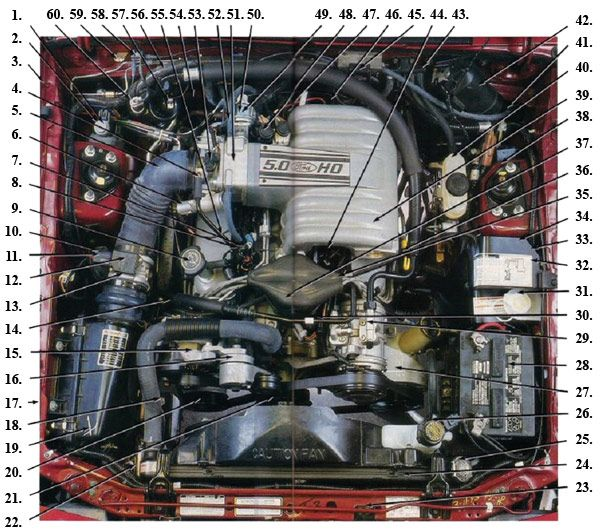 Fox Body Engine Compartment Diagram | 8793 Mustangs