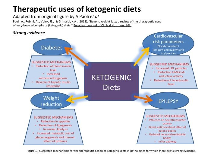LCHF and Ketogenic diet