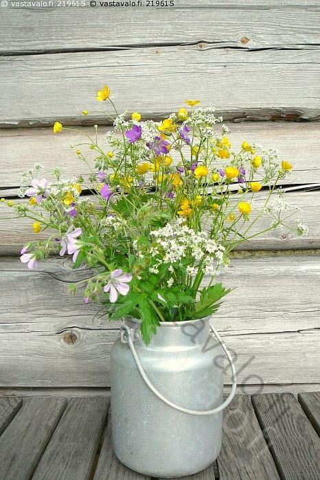 Kedon kukkasia hinkissä - kukat kedon kukkasia leinikit metsäkurjenpolvet kellokukkaset poimittu poimia koriste ilo piristys luonnon kauneus vanha astia hinkki vanha hirsiseinä hirret kuviot halkeamat pinta karhea harmaa vanha pöytä puinen kesä loma mökkeily