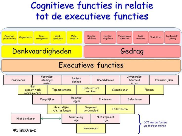 Cognitieve functies en executieve functies Emiel van Doorn StiBCO